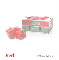 Red Bell Pepper Link