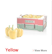Yellow Bell Pepper Link